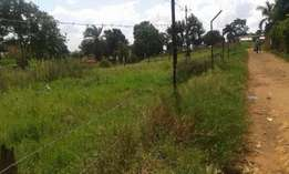 8plots of land in kawuku 300 meters away from the lake