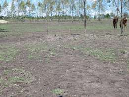 Beautiful 5 acre Land for sale - Narok