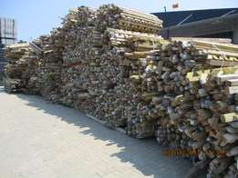 austrian pine timber for sale