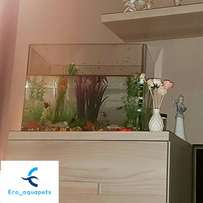 aquarium cleaning services