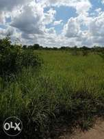 LAND for sale in Nakasongola 360 acres