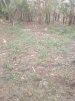 2 acres of land muranga 2m.