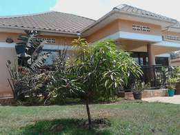 Complete 3 bedroom fully furnished house for rent in Rubaga at 1200$