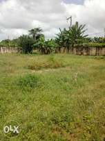 Landed property 100ft by 100ft for sale