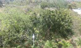 Cute 1/4 acre plot for sale in serena shanzu with genuine title deed