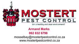 Pest Control - Mosselbay: Experience the next level of service