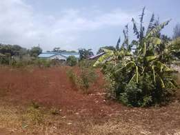 1/2Acre at kona ya musa on sale