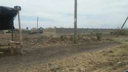 1/8 plot for sale in syokimau,community road.
