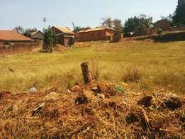 50 Decimals Milo land for sale in Munyonyo