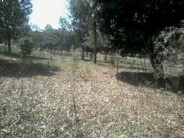 Gathiga 1/2acre plot at 8.5m