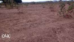 kanyonyo 50*100 plot for sale