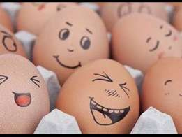 Cheap Quality Eggs at Only * * Ksh 340 * * Per Tray
