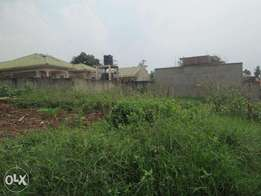 50x1100 with its tittle ready at 50m negotiable