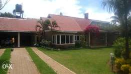 Six b/rs hse on sale on one acre land at limo house kapsoya eldoret