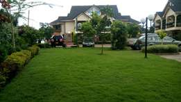5 bedroom with dsq Corner house for sale