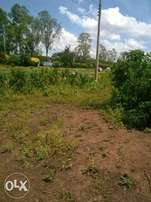 OJOLA/ongalo Plot 1/2 Acre 3.8 M
