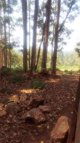20 acres for sale in loresho Loresho - image 1