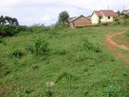 plot 50*100 next to one love beach busabala for sale