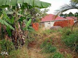 land for sale at Mukono