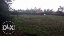 Serenely located 6 pieces of 1/8 acre residential plot witha title