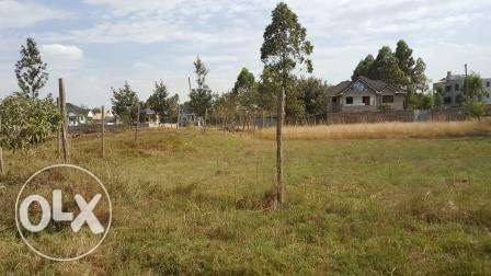 Kiambu Kamiti road Mugumo 1/4 Acre Plots for Sale Nairobi CBD - image 3
