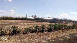 50x100 Ready Title Plot Ruiru Kiu Eastern Bypass.