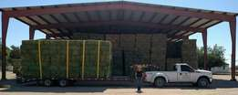 high quality Animal feed Lucerne Hay for sale