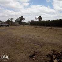 Touching main road 1/4acre plot 2percels