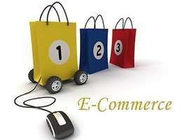 eCommerce Web Store Development