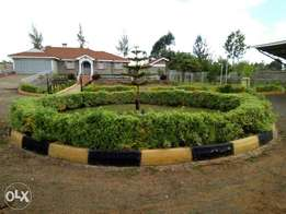 Hse for sale Elgon view Eldoret