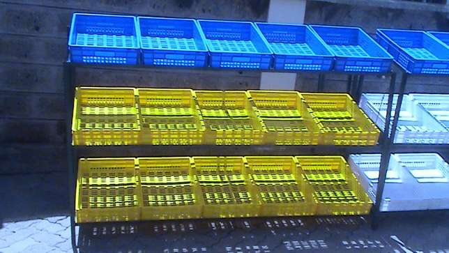 Grocery crates and shelves Syokimau - image 3
