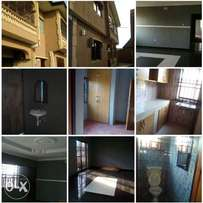 Executive 2bedroom flat at igando 300k yearly