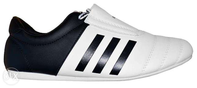 Taekwondo Adidas Shoes / Martial Arts