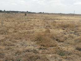 1/4 an acre At Chuna Estate Kitengela