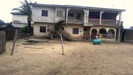2 bedroom flat 4wings on a full plot of land for sale at igboelerin.