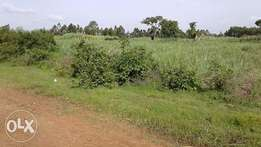 2acre land on sale in Kabuoch-kobita,12Km from Rongo town.200,000.