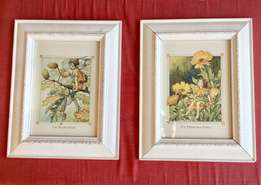 Pair of Flower Fairy Framed Prints / Pictures