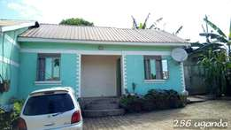 posh self contained double in kirinya at 250k