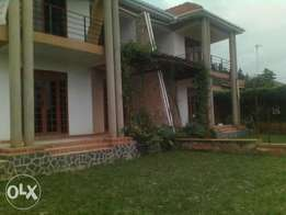 Apartment for rent in Mutungo.