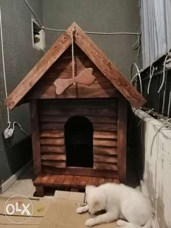 Big dog house wood vintage style بيت خشب كبير كلب