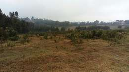 A good place for camping for hire in pipeline next to Lake Nakuru