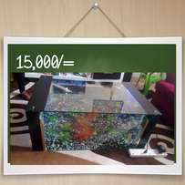 Coffee Table aquarium 15000/=