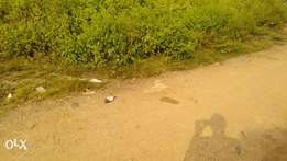 Two plots of land with c of o for sale in Osogbo