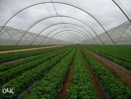 Shade Nets & Insect nets for greenhouses