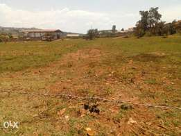 Land for sale in seeta
