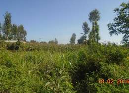40 by 80 plot for sale at ruaka