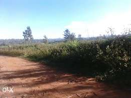 2acres on sell mayoni