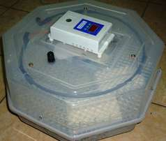 Cheap egg incubator from ksh 12000 at Ecochicks Poultry