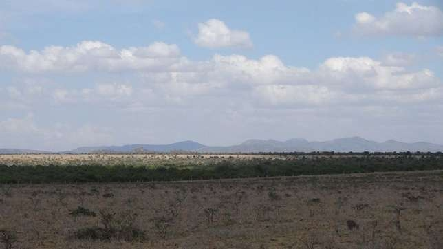 Faru Gardens Nanyuki (Land For Sale) Nanyuki - image 2