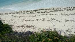TREMENDOUS 1/2 acre beach plot located in mtwapa with clean title.